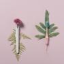 TIO Bioplastikust hambahari - Roosa/Soft